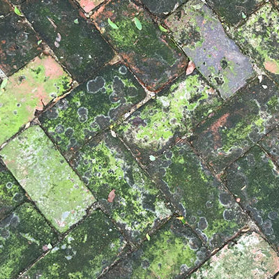 How Can You Efficiently Replace Brick Paving?